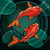 stock photo of fish pond  - Pair of coi fishes in a pond drawn in cartoon style - JPG