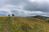 pic of prairie  - Trekking path through prairie grass at mountains and hills of central Serbia - JPG