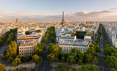 stock photo of tree lined street  - Paris from above showcasing the capital city - JPG