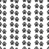 picture of clutch  - Seamless pattern with paw prints with clutches isolated on white background - JPG