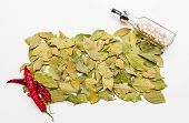 foto of bay leaf  - Bay leaves spices and herb on white background for decorate design - JPG