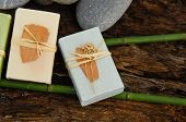 stock photo of driftwood  - Soap with bamboo grove on driftwood   - JPG