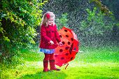picture of little young child children girl toddler  - Little girl with red umbrella playing in the rain - JPG