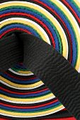 pic of black-belt  - close - JPG