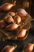 stock photo of red shallot  - Raw Organic Spicy Shallots on a Background - JPG