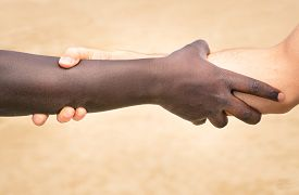 image of respect  - Black and white hands in modern handshake to show each other friendship and respect  - JPG