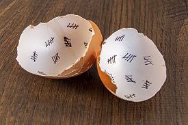 picture of cross-hatch  - Egg shells shown lying on a wooden background with marks inside counting down the days till hatching - JPG