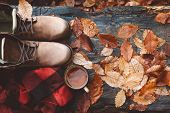 Two pairs of hiking boots on wooden bench on fallen autumn leaves in the forest, outdoor travel conc poster