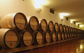 image of wine cellar  - wine cellar - JPG