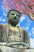 The big Buddha, Daibutsu, in Kamakura, Japan.
