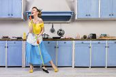 Retro Pin Up Girl Woman Female Housewife Wearing Colorful Top, Skirt And White Apron Holding Cooked  poster
