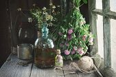 Clover Tincture Or Infusion, Essential Oil Bottle And Medicinal Herbs Bunches Near Window Inside The poster