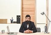 Portrait Of Bearded Businessman. Bearded Businessman Sitting At Table. Successful Businessman. Offic poster