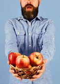 Man With Beard Holds Wicker Bowl With Fruit On Blue Background, Defocused. Farmer With Surprise On F poster