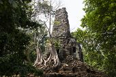 Ancient Ruins Of Preah Palilay Temple In Angkor Wat Complex, Cambodia. Demolished Hindu Temple With  poster