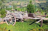stock photo of ox wagon  - Thais classic vehicles for farmer of Thailand - JPG