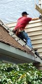 picture of red siding  - Young man perches on metal ladder on roof top. He is installing siding on his home. He is wearing a tool belt red shirt and work jeans.