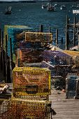 Lobster Traps Maine