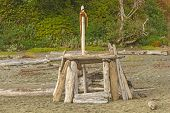 picture of pacific rim  - Homemade Beach Shelter on the Pacific Coast near Tofino - JPG