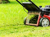 stock photo of trimmers  - Worker mowing grass with the mowing machine - JPG