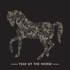 pic of year horse  - Happy New Year 2014 celebration flyer - JPG