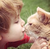picture of pal  - Young boy kissing his cat - JPG