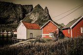 pic of reining  - Traditional wooden houses against mountain peak in Reine village - JPG