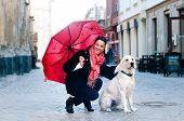 picture of pavestone  - Pretty woman sits in old city with dog and looking at camera - JPG