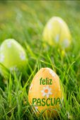 stock photo of pasqua  - feliz pasqua against easter eggs in the grass - JPG