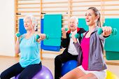 picture of physical exercise  - Group of senior and young people at physiotherapy doing exercises - JPG