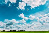 image of biodiesel  - Green Field Blue Sky - JPG