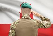 picture of gibraltar  - Soldier in hat facing national flag series  - JPG