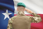 image of texans  - Soldier saluting to US state flag series  - JPG