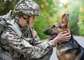Soldier with military working dog on blurred background poster