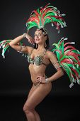 Beautiful  Woman In Carnival Costume With Rhinestones And Natural Feathers. poster