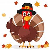 Turkey In Hat Shows Like On A White With Autumn Leaves. Thanksgiving Day. poster