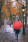Woman Walling With Red Umbrella During Rain In Paris, France. poster