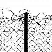 stock photo of stockade  - vector of wired fence with barbed wires on white background - JPG