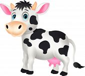 picture of dairy cattle  - Vector illustration of Cute cow cartoon isolated on white background - JPG