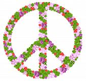 foto of peace-sign  - Peace sign in many fancy flowers - JPG