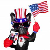 stock photo of selfie  - american selfie french bulldog taking a selfie and waving with usa flag - JPG