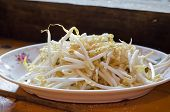 picture of bean sprouts  - Bean sprouts on white plates Mung beans - JPG