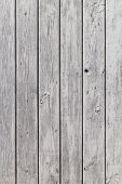 foto of gey  - The wall of wooden planks painted in white or gey - JPG