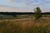 picture of steppes  - The autumn landscape - JPG