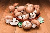 picture of agaricus  - Fresh brown cultivated champignons in wooden board - JPG
