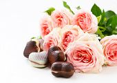 picture of valentine candy  - chocolate candy in the shape of hearts and pink roses for Valentine - JPG