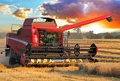 stock photo of combine  - Harvester combine in wheat field with sun