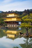 foto of shogun  - View of Kinkaku - JPG