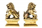 pic of curio  - a couple of golden chinese guardian lions isolated over a white background - JPG