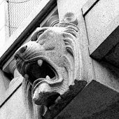 picture of lions-head  - a stone lion building grey lion head - JPG